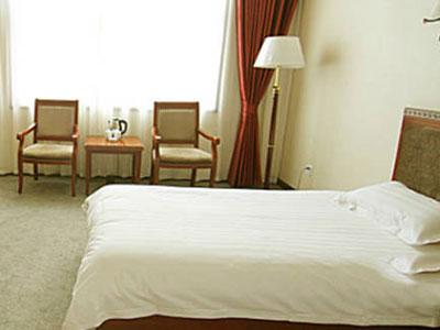小龙大酒店大床房