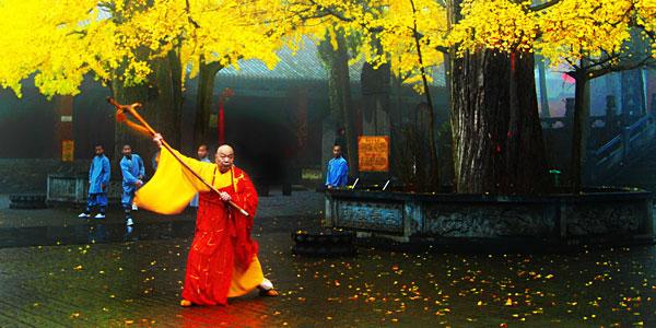 嵩山丰富的佛教文化